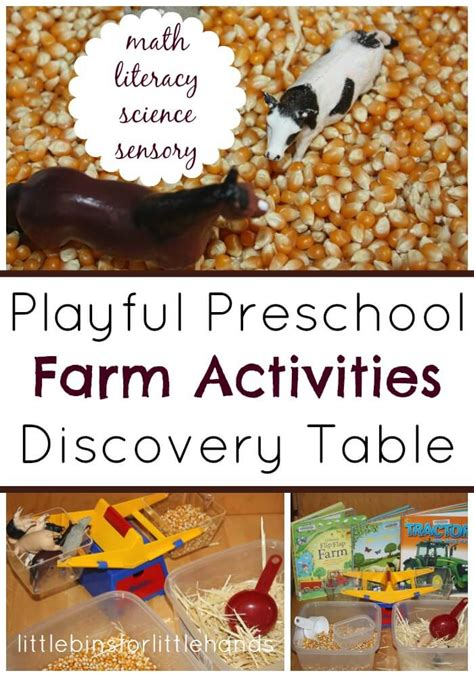 preschool farm activities for math science literacy and 953   Farm Activities Discovery Table Math Literacy Science Sensory