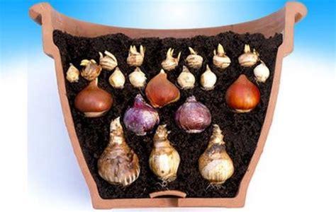 pot de fleur exterieur ikea best 25 pot de fleur exterieur ideas on pot jardin fleurs en pots and jardinage en