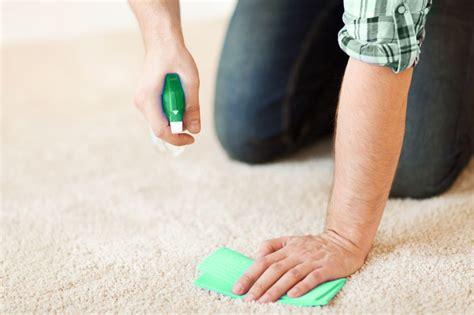 tapis clean entreprise de nettoyage de tapis sur