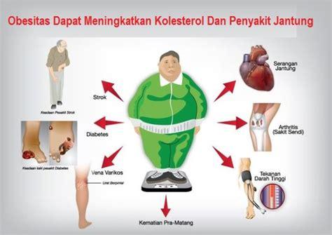Wanita Dewasa Menurut Pria Hubungan Kolesterol Dengan Obesitas Obat Kolesterol
