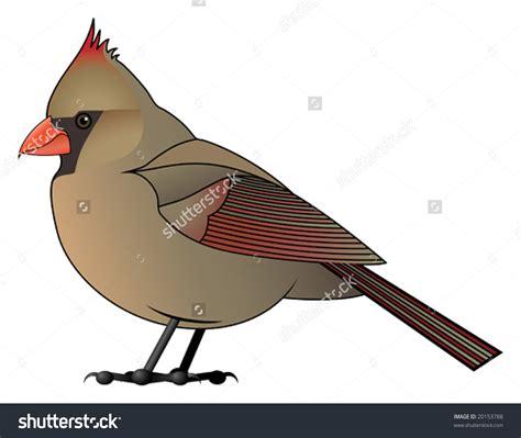Cardinal Clipart Cardinal Clipart Clipground