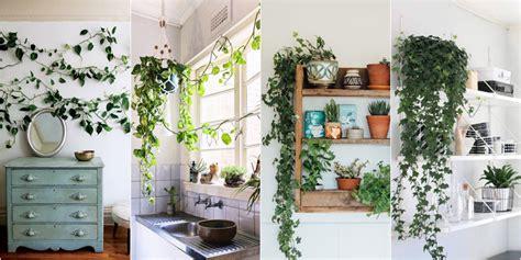 ornamen dekorasi interior   hits  sosial media