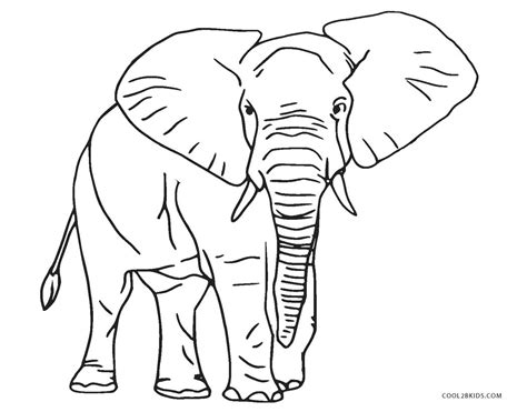 coloring pages free printable elephant coloring pages for cool2bkids
