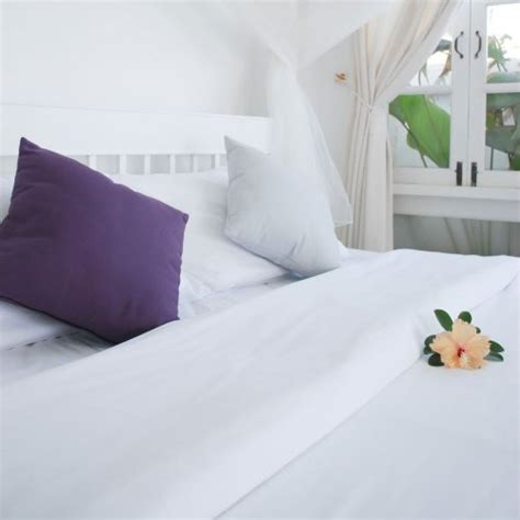 dust mite mattress cover pristine luxury dust mite mattress cover 15