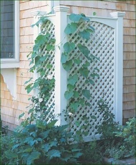 22 best images about walpole outdoors lattice on