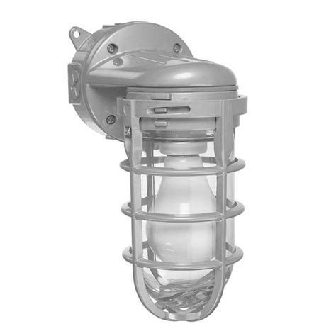 150 watt ceiling and wall mount metal cage globe light