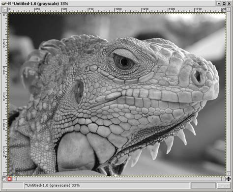 gimp converting color images  bw