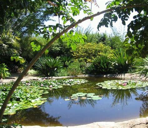 botanical gardens encinitas san diego botanic garden encinitas 2018 all you need