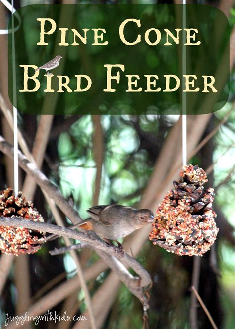 Pine Cone Bird Feeder – Juggling With Kids
