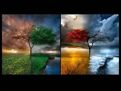 Seasons Change Season Changing Four Autumn Changes