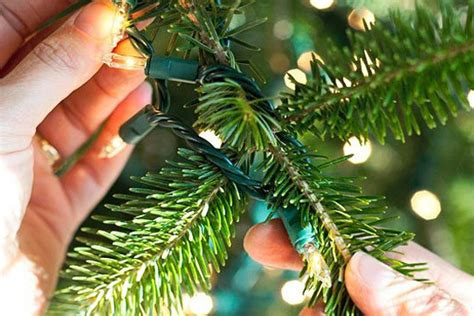 how to put lights on a christmas tree wrapping trees with christmas lights