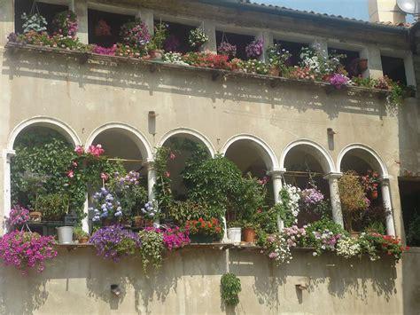 pflanzen fuer den balkon sommer sonnig mediterran