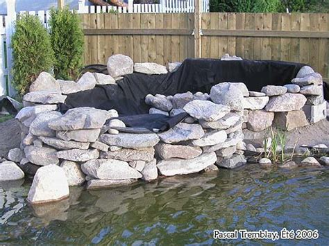 construire bassin jardin pas cher bassin de jardin