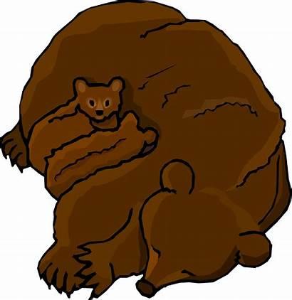 Bear Cartoon Bears Clipart Clip Grizzly Cub
