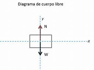 U00bfqu U00e9 Es Un Diagrama De Cuerpo Libre