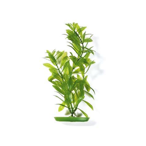 plante artificielle hygrophila d 233 coration pour aquarium marina wanimo