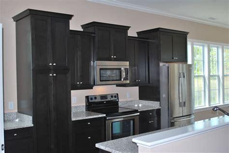 black cupboards kitchen ideas black kitchen cabinets