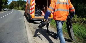 Accident De Voiture Mortel 77 : accident mortel pr s de saintes les corps autopsi s ce lundi sud ~ Medecine-chirurgie-esthetiques.com Avis de Voitures