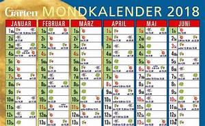 Mein Schöner Garten Mondkalender : mondkalender f r den garten zum herunterladen pinterest mondkalender der mond und dem den ~ Whattoseeinmadrid.com Haus und Dekorationen