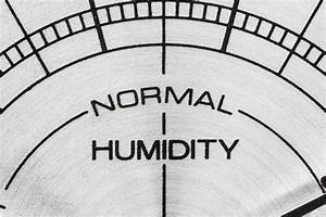 What Is The Ideal Basement Humidity Level