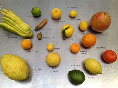 agar agar cuisine category produits du mois le de cyril lignac