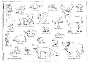 Ausmalbilder von hunden gibt es hier bei happycolorz viele, kostenlos zum ausdrucken auf einem blatt papier. Waldtiere Ausmalbilder Tiere Im Wald