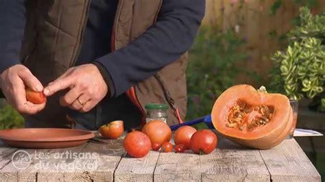 comment r 233 colter conserver r 233 cup 233 rer puis planter des graines de tomate et de courge
