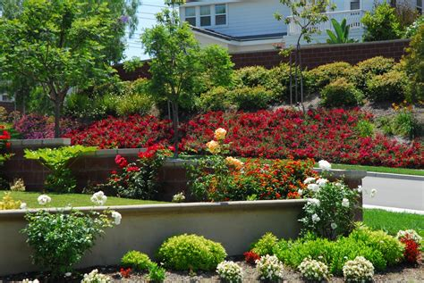 Layering To Create A Lush Landscape  Landscaping With