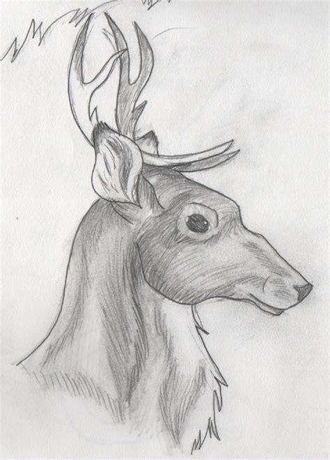 shaded reindeer  drawingmaster  deviantart