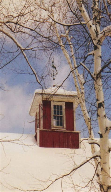 cupolas for barns 41 best cupolas images on weather vanes barn