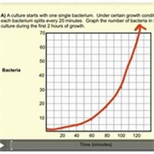 Exponential Functions in the Real World Tutorials, Quizzes ...