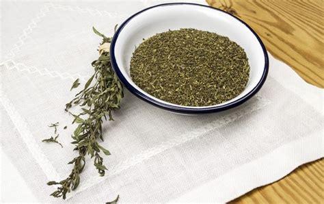 sarriette vivace cuisine zoom sur la sarriette herbe pour grillades le journal