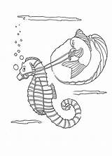 Coloring Seahorse Funny Fish Riding sketch template