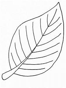 dibujos de hojas dibujos