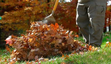 pulizia giardino consigli per la pulizia giardino la guida alle pulizie