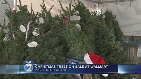 fresh xmas trees at walmart trees on sale before thanksgiving at walmart