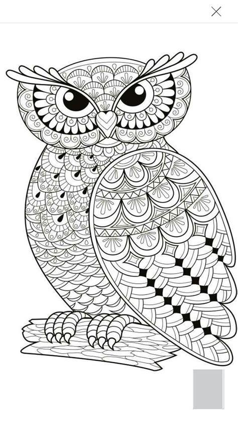 Coloring Owl by Owl Coloring Page Coloring Pages General Owl C