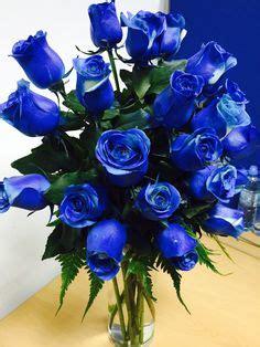 Blue Rose   Blue roses wallpaper, Beautiful rose flowers ...