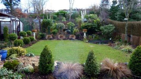 tanaman hias halaman belakang rumah