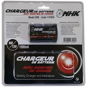 Chargeurs De Batterie Automatiques Avec Maintien De Charge : chargeur de batterie nhk avec maintien de charge europ 39 acc ~ Medecine-chirurgie-esthetiques.com Avis de Voitures