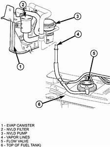 repair guides gasoline fuel injection fuel pump With fuel pump line