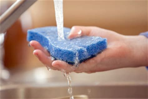Can You Disinfect Kitchen Sponges? Howstuffworks