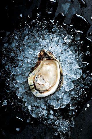 oyster bar ideas  pinterest oyster bar