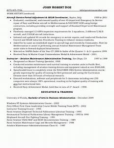 sample resumes federal resume or government resume With government resume template