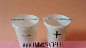 Prueba Test De Embarazo Positivo Y Negativo