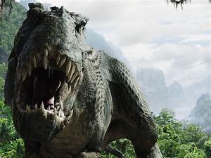 T-Rex Wallpapers Fun Animals Wiki, Videos, Pictures, Stories