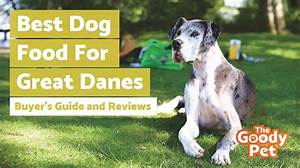 6 Best Dog Food For Great Danes October 2020 Review
