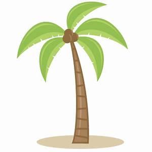 Transparent Cartoon Palm Tree - Cliparts.co