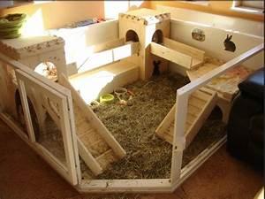 Maison Pour Lapin : blue dream lapins nains une aire pour votre lapin ~ Premium-room.com Idées de Décoration