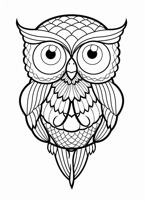 simple owl drawings black and white 12 luxury owl sketches daphnemaia daphnemaia
